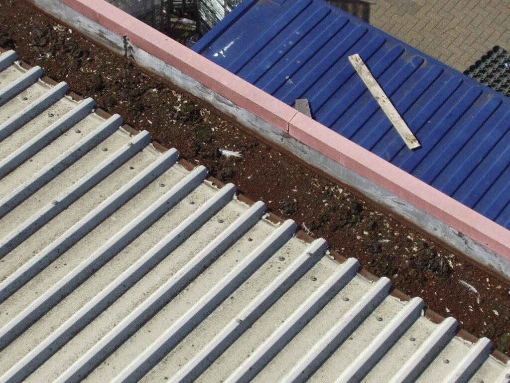 cut edge corrosion failure
